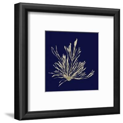 Seaweed on Navy III by Vision Studio