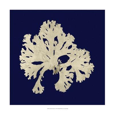Seaweed on Navy IV