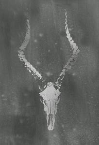 Silver Foil Rustic Mount II on Black Wash by Vision Studio