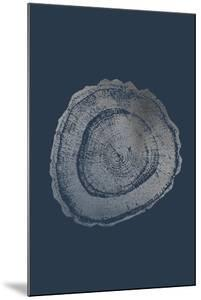 Silver Foil Tree Ring III on Cobalt by Vision Studio