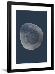 Silver Foil Tree Ring IV on Cobalt by Vision Studio