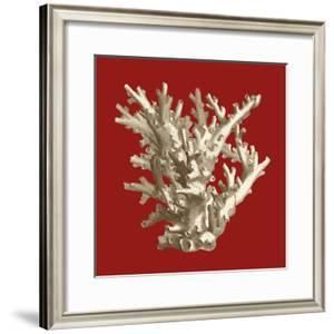 Small Coral on Red I by Vision Studio