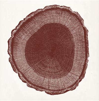 Tree Ring I by Vision Studio