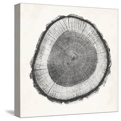 Tree Ring II