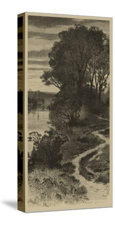 Twilight Grove II