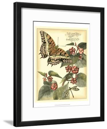 Whimsical Butterflies II