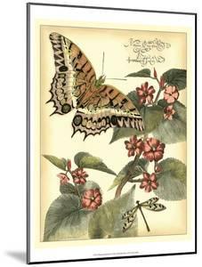 Whimsical Butterflies II by Vision Studio