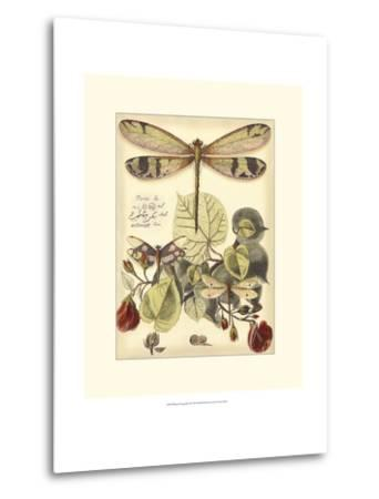 Whimsical Dragonflies II