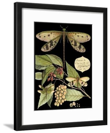 Whimsical Dragonfly on Black I