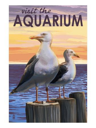 Visit the Aquarium, Sea Gulls Scene-Lantern Press-Art Print