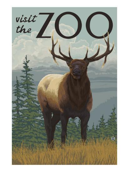 Visit the Zoo, Elk Solo-Lantern Press-Art Print