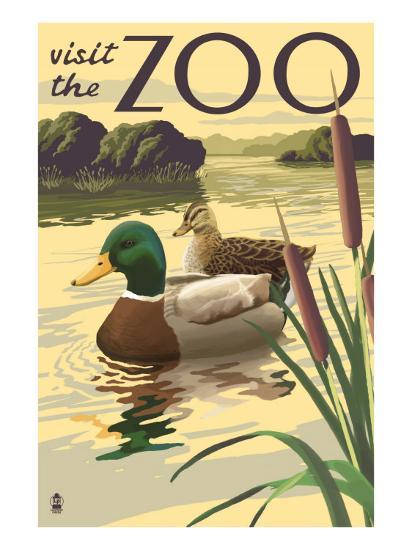 Visit the Zoo, Mallard Ducks Scene-Lantern Press-Art Print