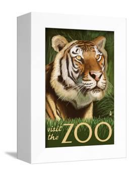 Visit the Zoo, Sumatran Tiger Scene-Lantern Press-Framed Stretched Canvas