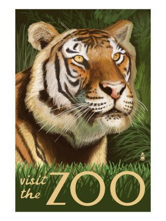 https://imgc.artprintimages.com/img/print/visit-the-zoo-sumatran-tiger-scene_u-l-q1goez20.jpg?p=0