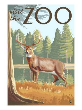 https://imgc.artprintimages.com/img/print/visit-the-zoo-white-tailed-deer-scene_u-l-q1goezs0.jpg?p=0
