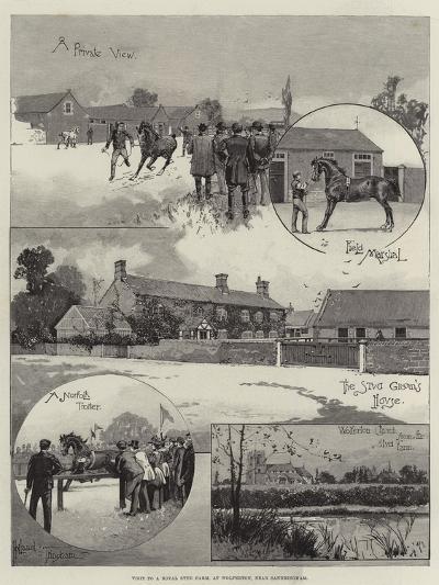 Visit to a Royal Stud Farm, at Wolferton, Near Sandringham-Joseph Holland Tringham-Giclee Print