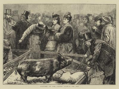 Visitors at the Cattle Show, a Pig Pen-Edward Frederick Brewtnall-Giclee Print