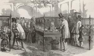 Visitors at the Philo- Peristeron Society's Annual Pigeon Show London