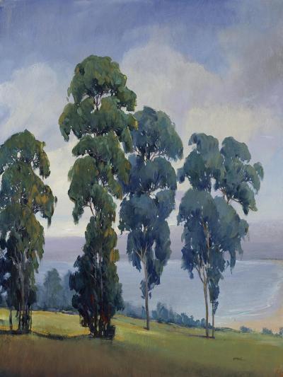 Vista View-Tim O'toole-Giclee Print