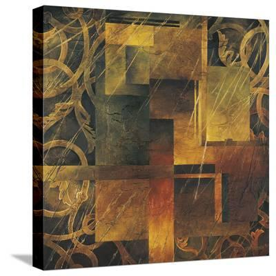 Visual Patterns II-Linda Thompson-Stretched Canvas Print