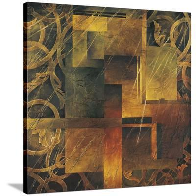 Visual Patterns II-Linda Thompson-Stretched Canvas Print