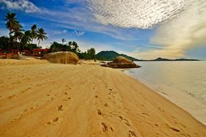 Deserted Morning Beach With Golden Sand And Footprints by vitalytitov