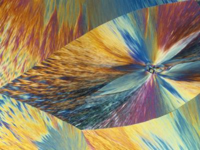 Vitamin C or Ascorbic Acid Crystals, Polarized LM-George Musil-Photographic Print
