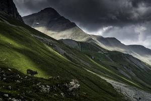 Albula Pass, Switzerland by Vito Guarino