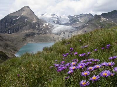 Corno Gries, Switzerland
