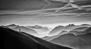 Hunter In The Fog Bw by Vito Guarino