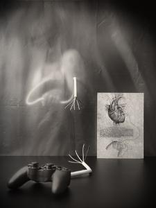 Rebel Heart by Vito Guarino