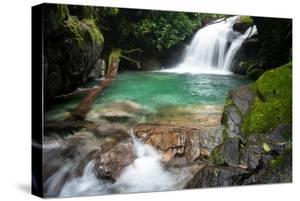 Beautiful Clear Water River in the Atlantic Rainforest, Rio De Janeiro, Brazil by Vitor Marigo