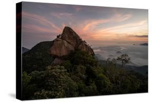 Beautiful Landscape of Green Urban Tijuca Forest Seen from Rocky Bico Do Papagaio Mountain, Rio De by Vitor Marigo