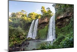 Beautiful Twin Waterfalls in the Atlantic Rainforest near Cataratas Do Iguacu (Iguazu Falls), Foz D by Vitor Marigo