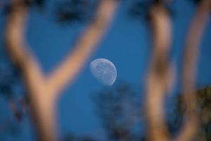 Partial Moon Seen during the Day with Blue Sky in Serrinha Do Alambari Ecological Reserve, Serra Da by Vitor Marigo