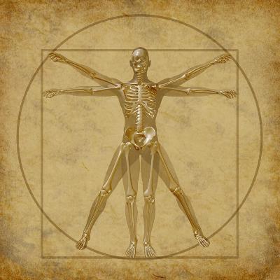 Vitruvian Human Diagram Grunge Medical Chart-digitalista-Art Print