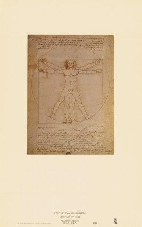 https://imgc.artprintimages.com/img/print/vitruvian-man-c-1492_u-l-e81e30.jpg?p=0