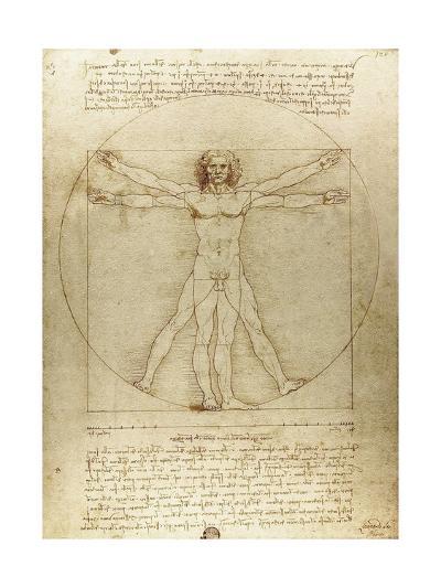 Vitruvian Man (Canon of Proportions)-Leonardo da Vinci-Giclee Print