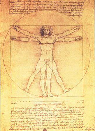 Leonardo da Vinci Human Proportions Vitruvian Man Vintage Print