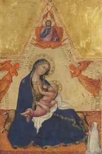 Madonna and Child by Vittore Carpaccio