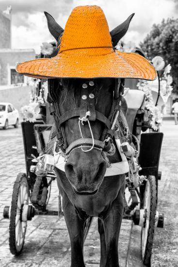 ¡Viva Mexico! B&W Collection - Horse with Light Orange straw Hat-Philippe Hugonnard-Photographic Print
