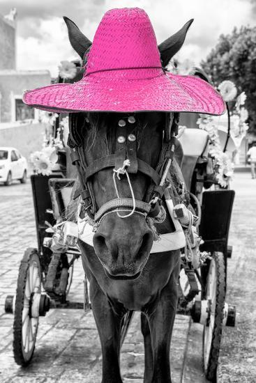 ¡Viva Mexico! B&W Collection - Horse with Pink straw Hat-Philippe Hugonnard-Photographic Print