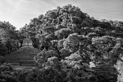 ?Viva Mexico! B&W Collection - Mayan Ruins in Palenque at Sunrise II-Philippe Hugonnard-Photographic Print