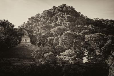 ?Viva Mexico! B&W Collection - Mayan Ruins in Palenque at Sunrise-Philippe Hugonnard-Photographic Print