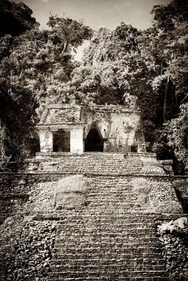 ¡Viva Mexico! B&W Collection - Mayan Ruins in Palenque III-Philippe Hugonnard-Photographic Print