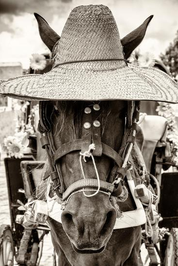 ¡Viva Mexico! B&W Collection - Portrait of Horse with Hat-Philippe Hugonnard-Photographic Print