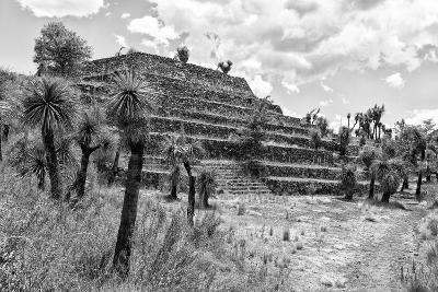 ¡Viva Mexico! B&W Collection - Pyramid of Puebla III (Cantona Ruins)-Philippe Hugonnard-Photographic Print