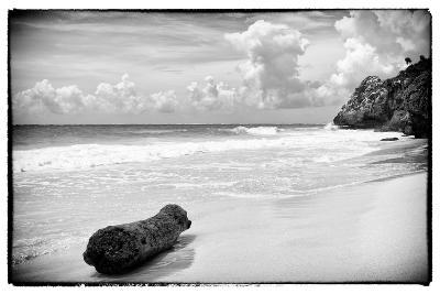 ?Viva Mexico! B&W Collection - Tree Trunk on a Caribbean Beach-Philippe Hugonnard-Photographic Print