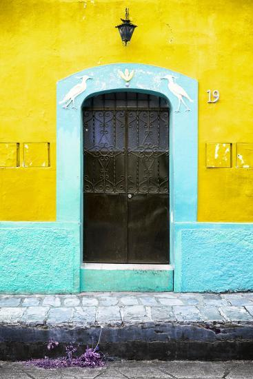 ¡Viva Mexico! Collection - 19e Door and Yellow Wall-Philippe Hugonnard-Photographic Print