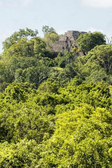 ?Viva Mexico! Collection - Ancient Maya City within the jungle III - Calakmul-Philippe Hugonnard-Photographic Print